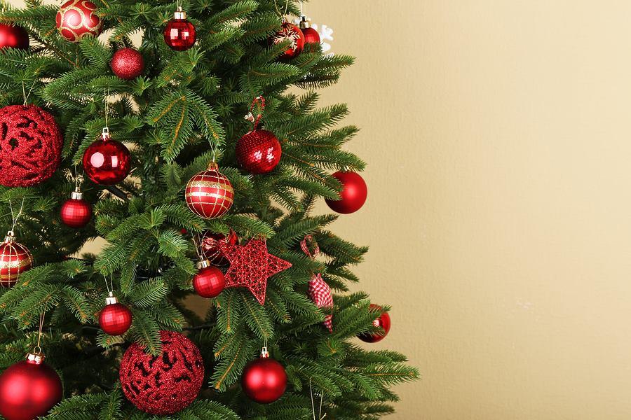 UBT ua uron Krishtlindjet besimtarëve katolikë