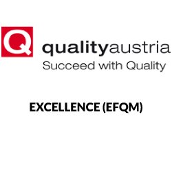Ekselencë (EFQM)