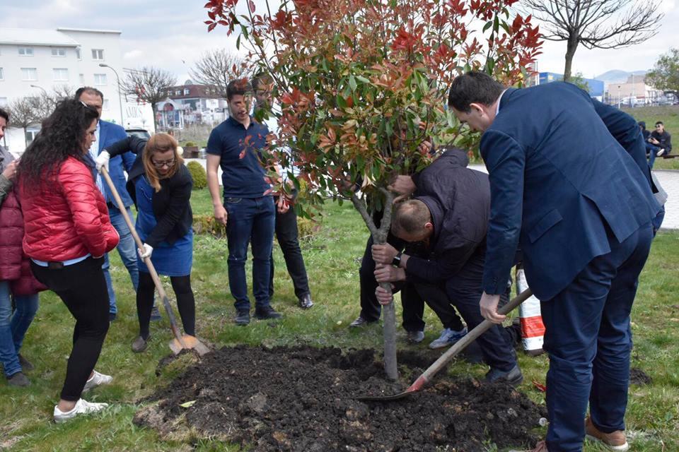 Në Ditën e Tokës, UBT i bashkohet nismës botërore për mbjelljen e drunjve