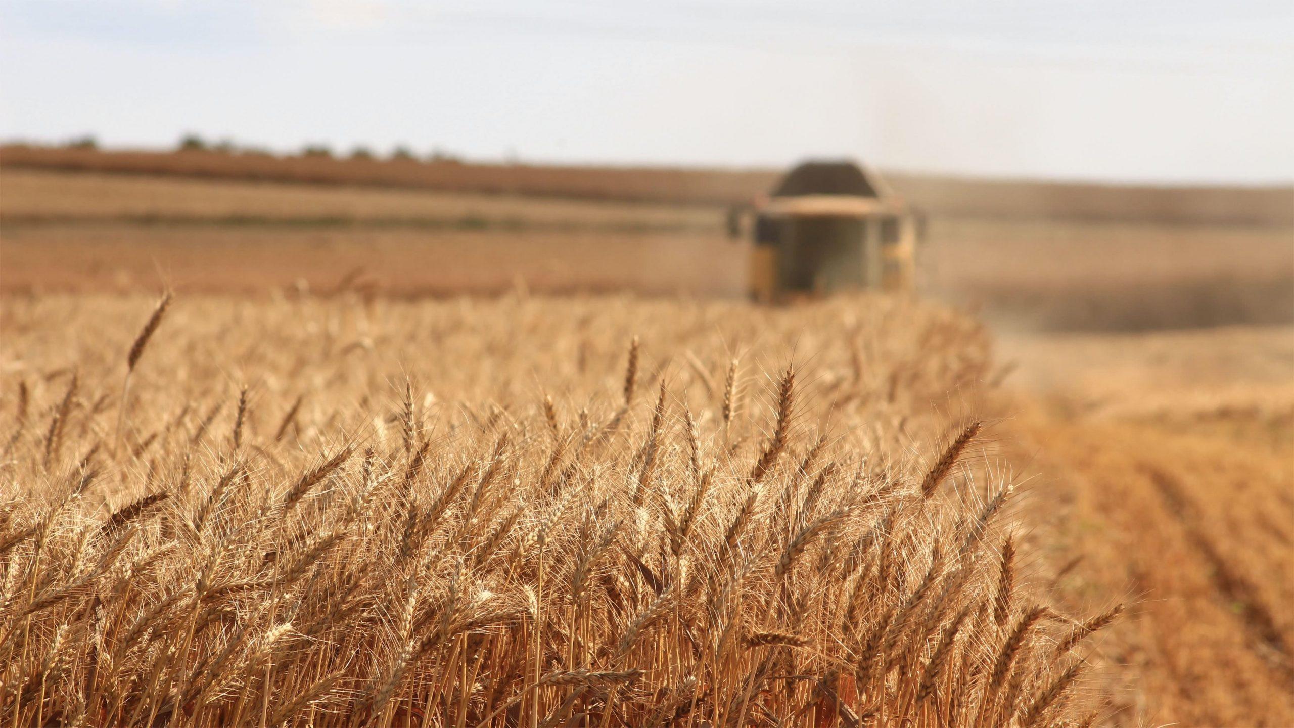 Inxhinieria e Agrikulturës dhe Mjedisit